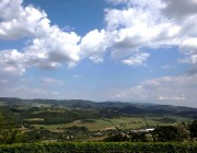 Fattoria Querceto_Chianti_Holiday apartments with swimming pool near Florence